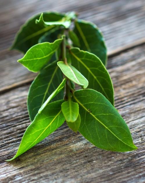 Laurel bay leaves on a wooden background