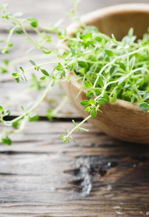 Fresh green thyme on the wooden table, selective focus
