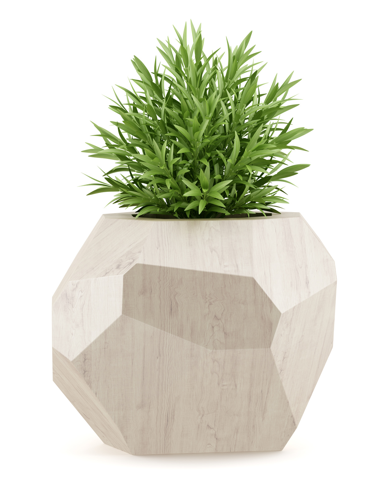 House plant in wooden pot gary 39 s garden - Seven tricks for healthier potted plants ...