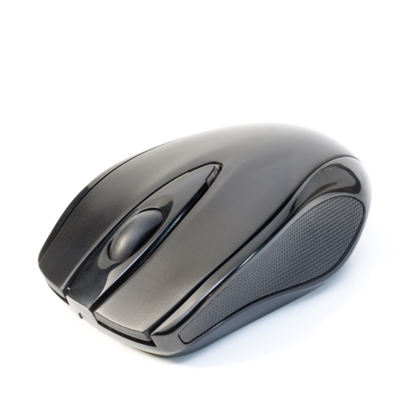 Mouse