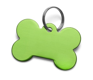 Blank Metal Bone Dog Tag With Ring Isolated on White Background.