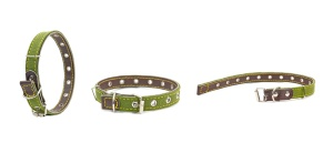 green leather dog collars