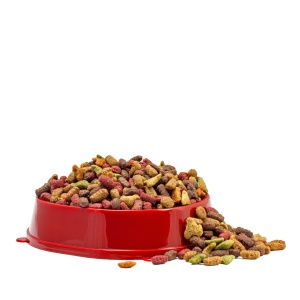 Multicolored dry cat or dog food in red bowl isolated on white b