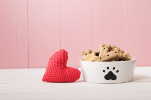 I Love My Dog concept with a red textile heart alongside a doggy bowl decorated with a paw print and filled with biscuits, pink background with copyspace