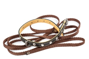 Leather dog collar and leash isolated on a white background.